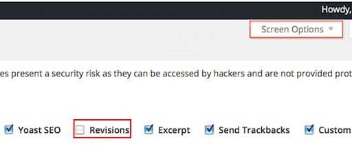 Still Not Able to See Post Revision Option in WordPress